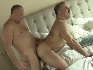 Two Hot Daddy Bears Gay Sex