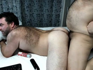 2 bears on cam