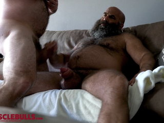 hairy muscle bear shooting a big load