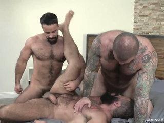 Three hot bears Teddy Torres, Alex Tikas, Alexander Kristov