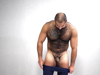 hot russian bear playing