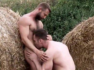 Farm fuck